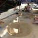 Святкування дня археолога